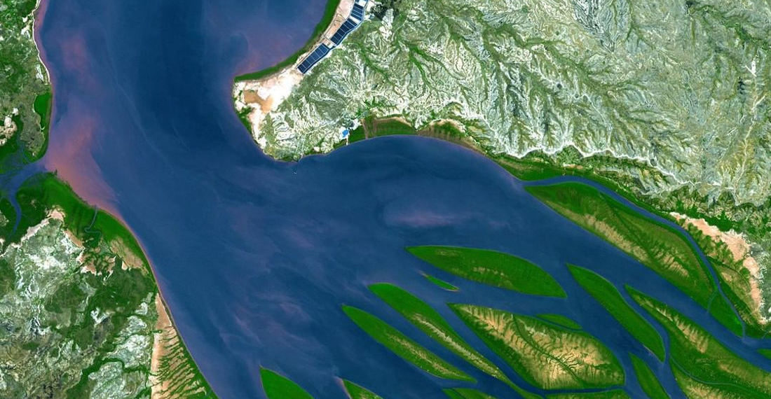 A Bay That Looks Like A Giant Octopus When Viewed From Above