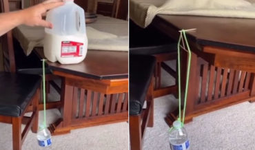 Physics!: Guy Suspends Full Water Bottle From Edge Of Table With Toothpick