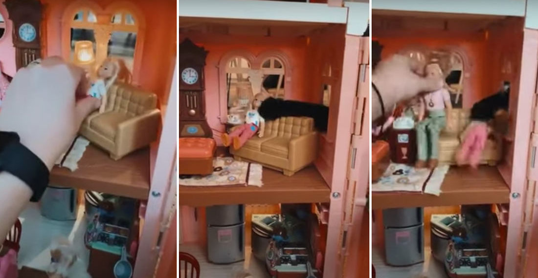 Gimme That!: Cat Snatches Doll Through Window Of Dollhouse
