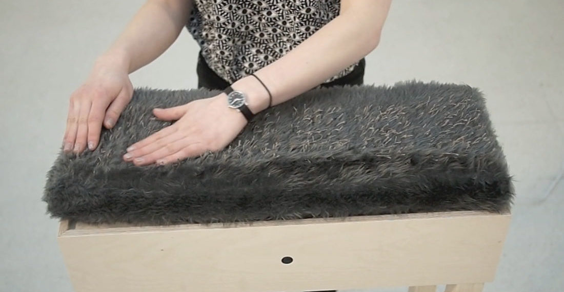 Mew, A Furry Instrument That Meows And Growls As You Pet It