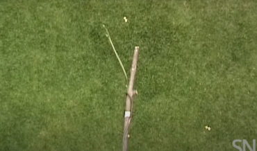 Whoa: Flying Snake Launches Itself 30-Feet From Tree Branch