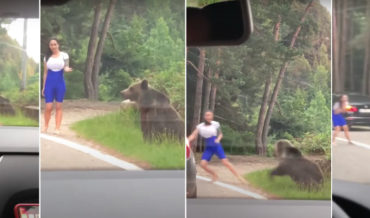 Poor Decision Making: Model Trying To Have Photo Taken With Wild Bear