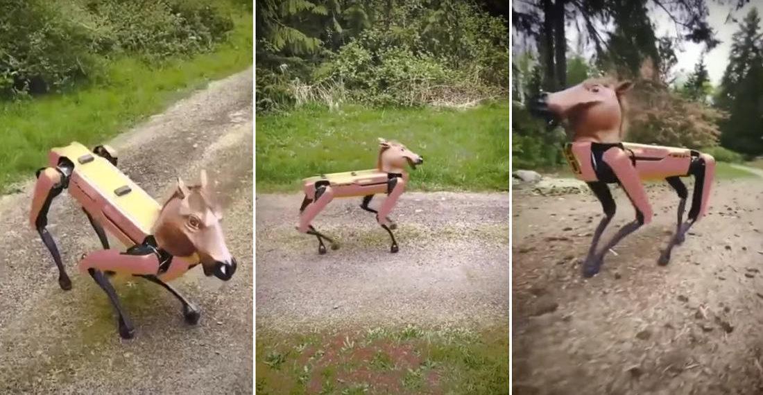 Boston Dynamics Spot Robot Wearing A Rubber Horse Head Mask
