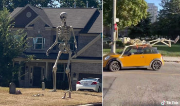 Curses!: Home Depot Quickly Sells Out Of 12-Foot Tall, $300 Skeleton Yard Decoration