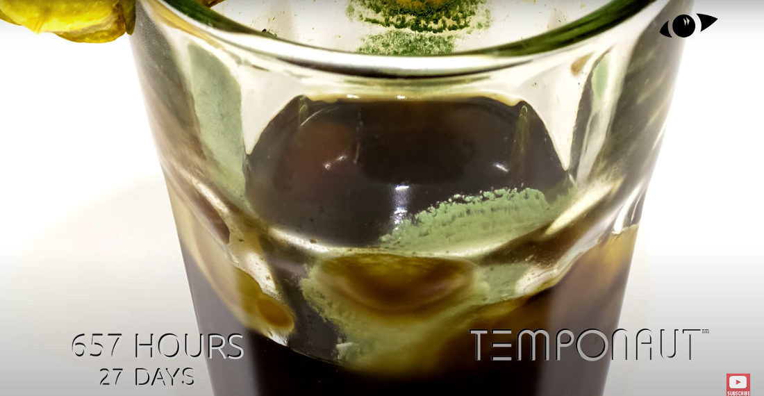 105 Day Timelapse Of A Glass Of Soda