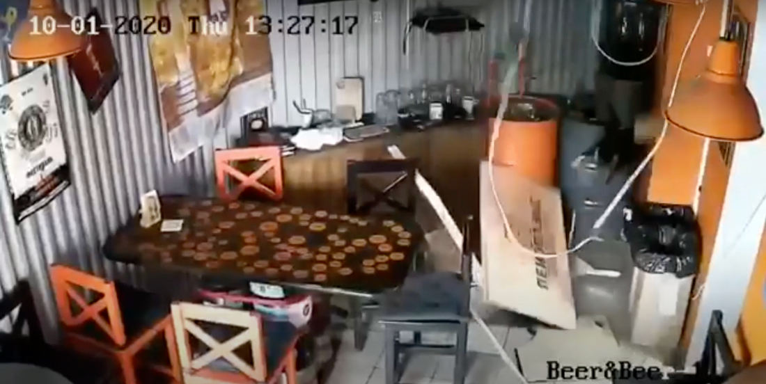Surprise!: Cat Falls Through Ceiling Of Russian Bar