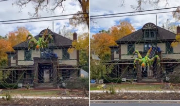 Taking Halloween Seriously: A Giant Inflatable Spider That Crawls Down Its House-Sized Web