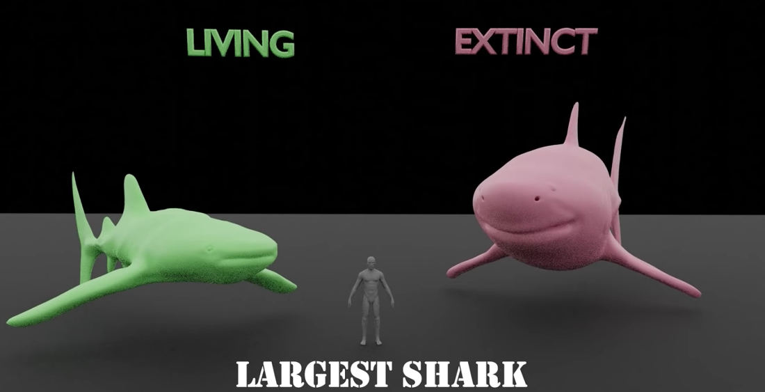 Comparing The Largest Living Vs Extinct Animals Of Same Species