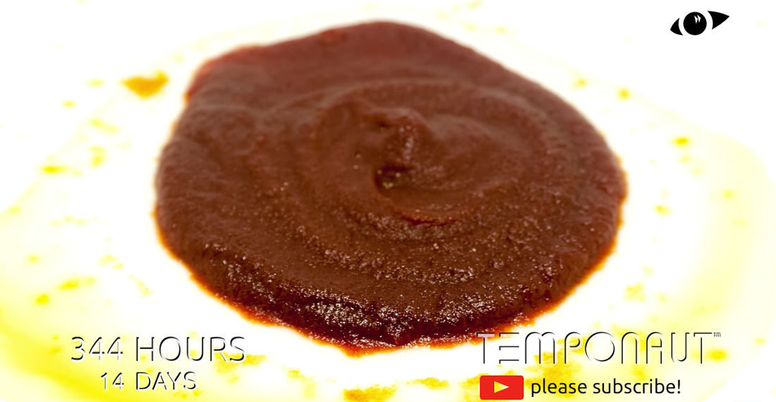 A Timelapse Of Ketchup Aging Over 21 Days