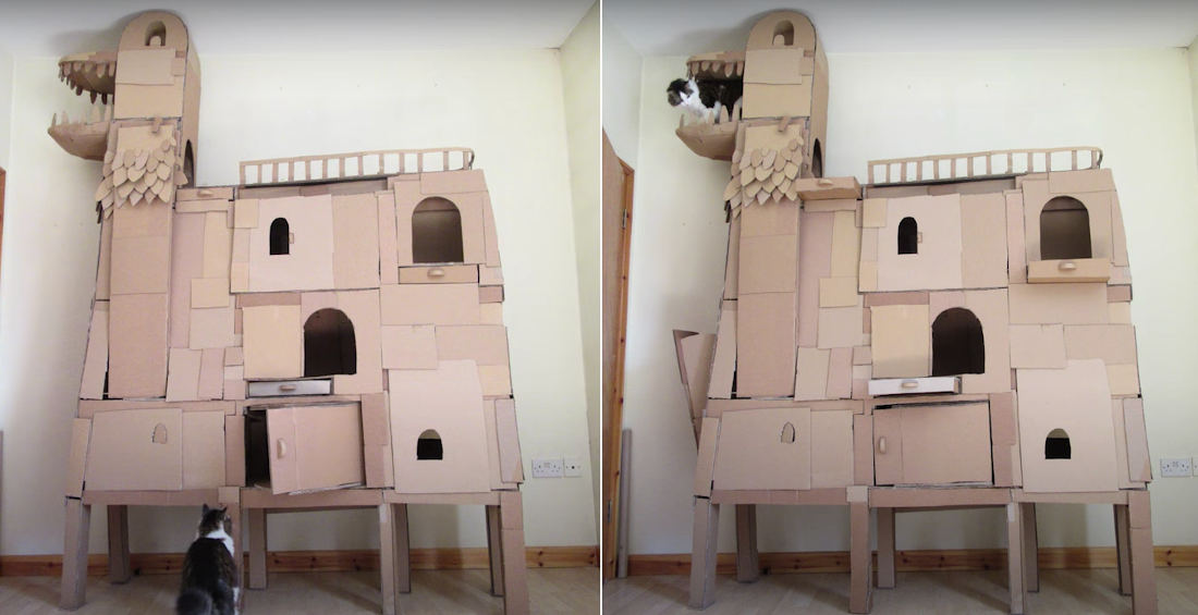 I Want It: A Ceiling-High Homemade Cardboard Cat Fort Shaped Like A Dragon