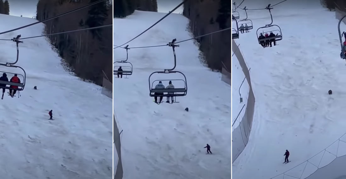 Come Back Here With My Porridge!: Bear Chases Skier Down Slope