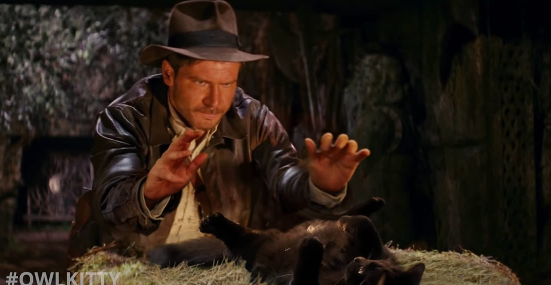 Cat Replaces Golden Idol In Indiana Jones And The Raiders Of The Lost Ark