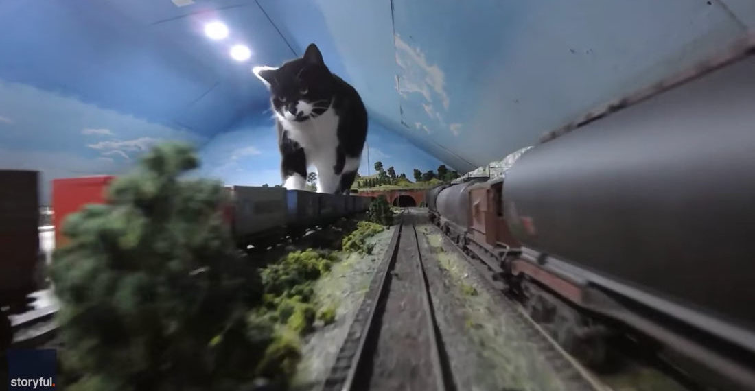 GoPro Attached To Model Train As It Travels Around Railway With Giant Cat