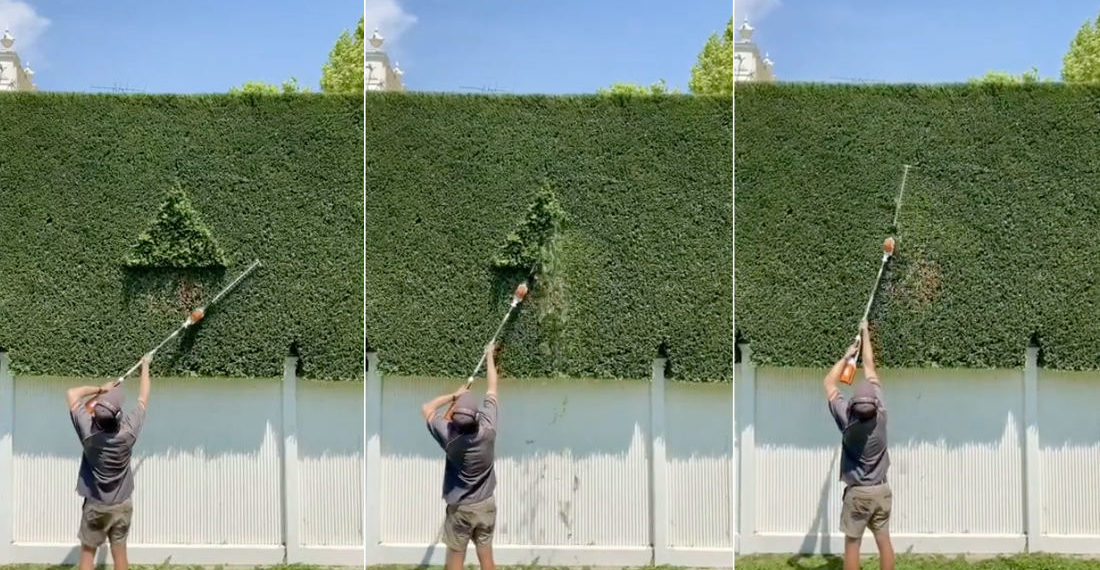 A Compilation Of Very Satisfying Hedge Trimming Finishes