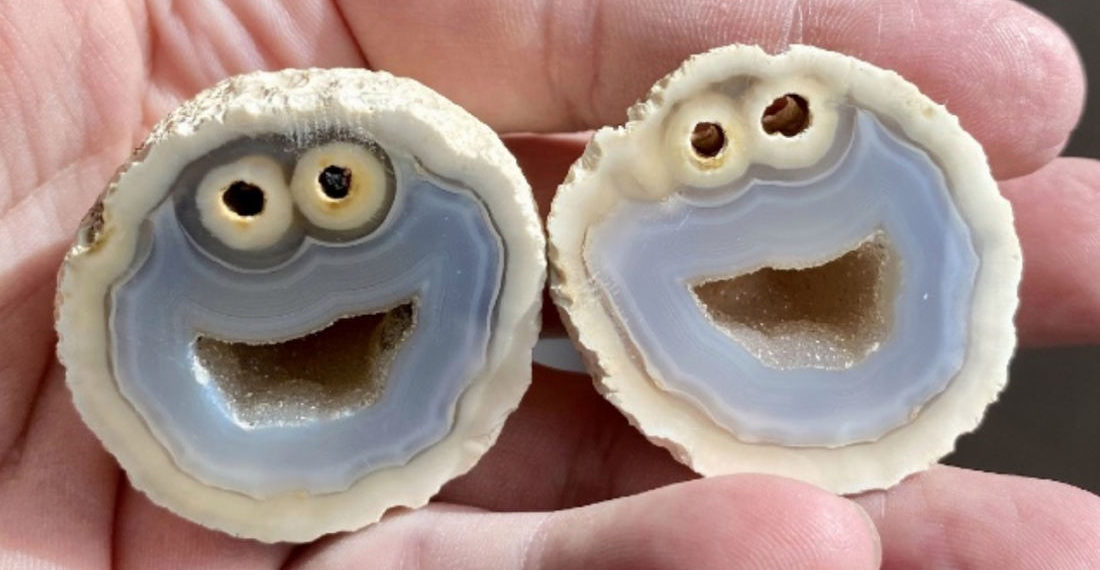 Geologist Halves Rock To Reveal Near Perfect Cookie Monster Faces