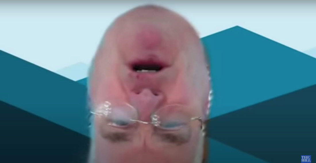 House Representative Appears Upside-Down During Virtual Committee Meeting