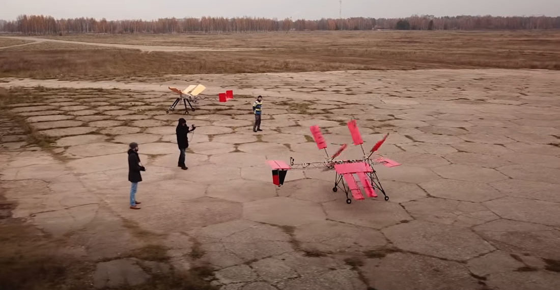 Dare To Dream: Giant Dragonfly R/C Plane Actually Flies