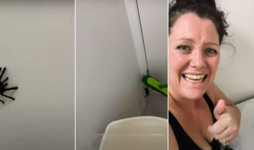 Good Job: Panicking Woman Successfully Captures Giant Hairy Spider In Box