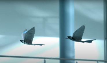 Festo Demonstrates Its Latest Generation Of Autonomous Flying Robotic Birds