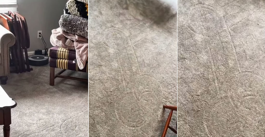 That Belongs In A Museum!: Roomba Draws Wiener On Carpet