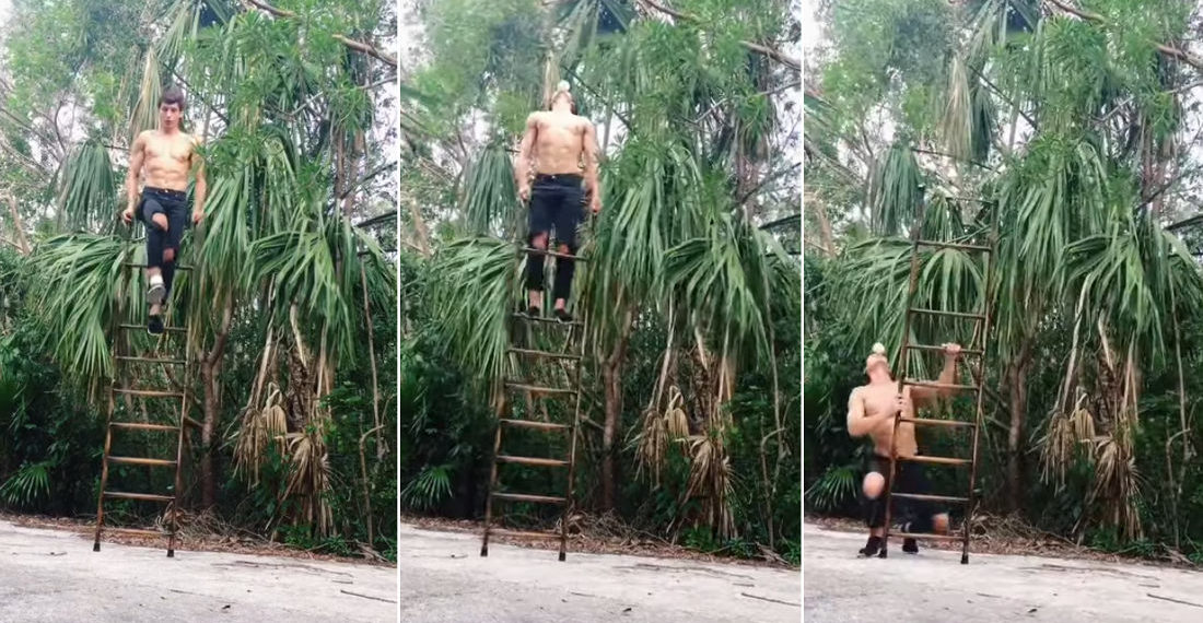 Man Shows Off His Ball Balancing Skills While Balancing On Ladder