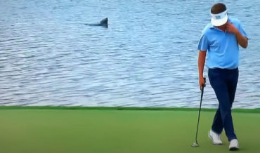 'Lake Monster' Spotted Behind Putting Golfer At Championship