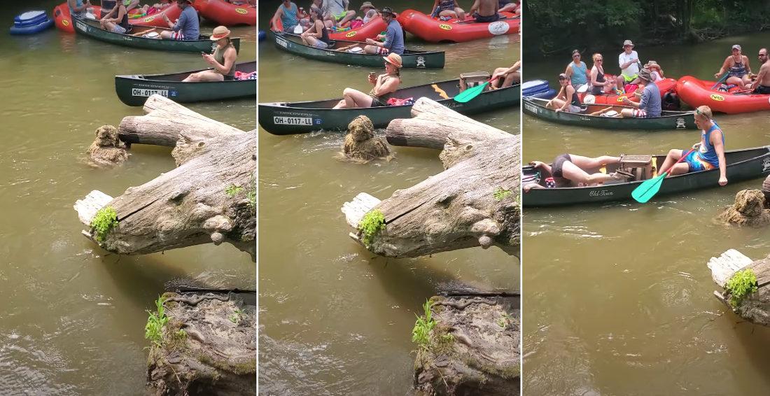 Hiding Sasquatch Scares Canoer Going Down River