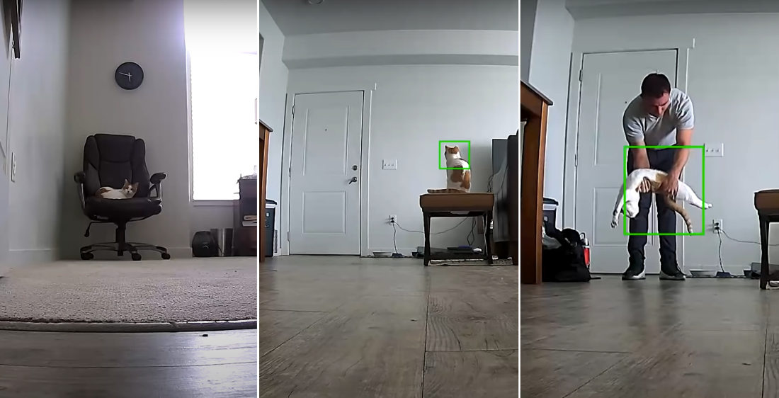 Awww: Home Security Cam Of Cat Getting Up To Greet Owner Returning Home