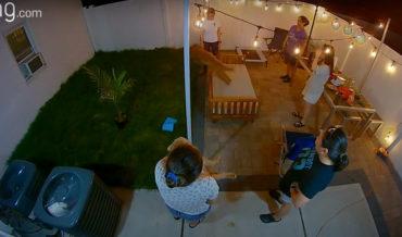 Dog Demonstrates Parkour Skills At Backyard Party