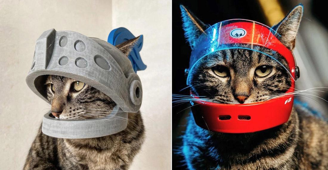 Man 3D Prints Helmets For His Cat
