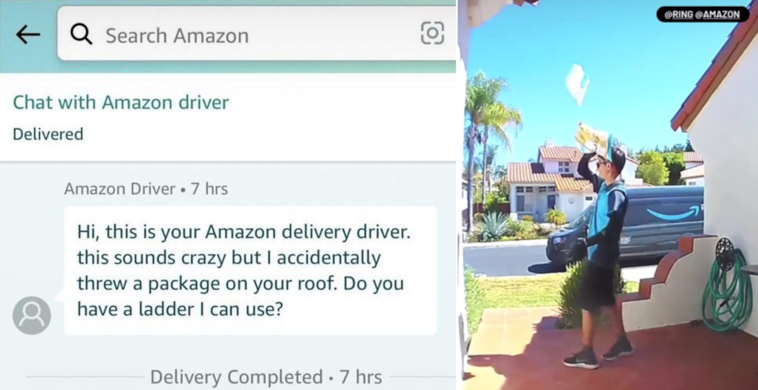 It Happens: Amazon Driver Accidentally Throws Package On Roof Swatting At Bug